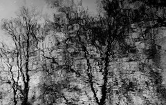 Purely Impressionist (John fae Fife) Tags: luxembourg xe2 fujifilmx