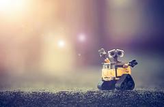 catch a falling star (jdewinnaar) Tags: light nature beauty toys warm loneliness sad heart disney pixar flare catch walle revoltech