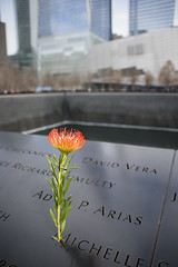 Memory (Igor Voller) Tags: world new york nyc red people usa black flower building green rot water grey us memorial leute bokeh manhattan name victim crowd 911 gray center depthoffield memory letter wtc grn  blume trade      namen  1109                    strongimpression