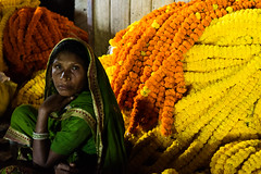 (Jordy B) Tags: woman india flower fleur colors asia market couleurs femme streetphotography asie kolkata march calcutta inde westbengal northindia travelphotography indedunord northemindia