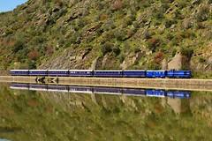 Comboio Especial n. 21861 (Vila Joya - Douro) - Bagaste (valeriodossantos) Tags: portugal train cp especial comboio riodouro furgo 1400 rgua passageiros caminhosdeferro sy3 sy4 sy5 carruagens linhadodouro fmnf locomotivadiesel comboiopresidencial df700 vilajoya fundaomuseunacionalferrovirio bagaste dyf408 sryf2 salopresidencial salorestaurante a7yf704 carruagemdosjornalistas salodosministros vilajoyadouro