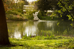 Sit down and Relax (praetorius.moritz) Tags: sunset sun lake forest garden relax 50mm pond nikon warmth rest