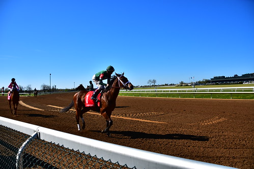 Keeneland: Number one readies for the race