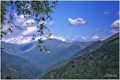 L'ombra della nuvola... (lefotodiannae) Tags: panorama nuvola della paesaggio scorcio oasi zegna lombra lefotodiannae