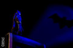 The Hero Gotham Deserves (radpix.ninja) Tags: blue lightpainting black comics actionfigure dc batman gotham darkknight batsignal
