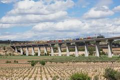 TECO en el Viaducto de Fosino (lagunadani) Tags: valencia puente paisaje rosco nubes 333 3333 renfe viaducto acciona camposdecultivo fontdelafiguera 333321 corredormediterraneo