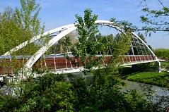 Torino - Parco della Pellerina (ikimuled) Tags: dora parchi fiumi