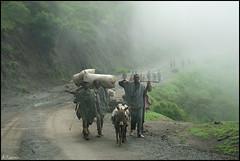 Camino del mercado. (antoniocamero21) Tags: color foto sony paisaje niebla lalibela etiopia mercaderes