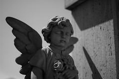 IMG_5154 (NoZe_Hobby_Ph) Tags: angel