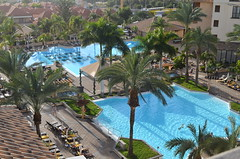 Costa Adeje Gran Hotel (tenerife holidays) Tags: vacation holiday gardens hotel spain flora europe palmtrees exotic pools tenerife tropical accommodation canaryislands swimmingpools wintersunshine costaadeje placestostay