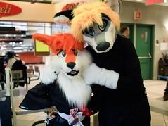 P1230199 (Kakurady) Tags: red dog white yellow grey furry cosplay bleach blonde ichigo fursuit ganime zanpakuto