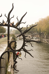 Sellando amores en el Sena (Leticia Lukaszewicz) Tags: paris france rio canon puente sena candados