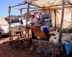 DSCF4445.jpg (ptpintoa@gmail.com) Tags: morroco marrakech marruecos marrocos