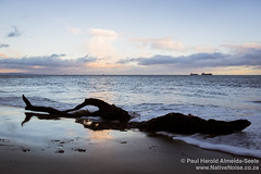 Late Afternoon on Kirkcaldy Beach, Scotland