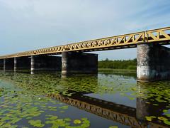 Halve Zolenlijn - Moerputten (Nelleke C) Tags: netherlands landscape nederland landschap noordbrabant 2015 spoorbrug moerputten halvezolenlijntje