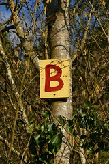 Alpha-B (jean.trouble) Tags: bridge b winter wild france tree nature lumix hiver country panasonic arbres promenade contraste alphabet campagne arbre panneau dmc lettre mercredi fz1000