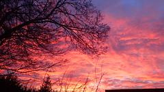 Sunrise (rjmiller1807) Tags: silhouette sunrise dawn january redsky goodmorning pinksky kidlington 2016