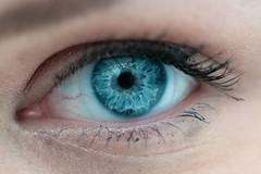 Elizabeth's eye (Silas1942) Tags: blue eye f8 105mmf28 105mmmicrof28