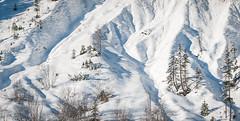 Winter_065  Winterlandschaft (wenzelfickert) Tags: schnee trees winter snow mountains landscape austria tirol sterreich berge alpen bume winterlandschaft karwendelgebirge bergmassiv