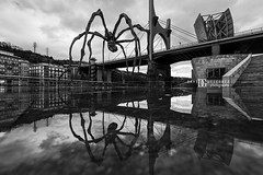 Spider Art Maman, Guggenheim Bilbao - Black & White (davidgutierrez.co.uk) Tags: street city uk travel bridge blue urban blackandwhite bw sculpture cloud white black reflection building art water monochrome beautiful rain museum architecture clouds buildings reflections puddle photography spider blackwhite nikon europe cityscape bokeh contemporary arts culture landmark icon structure architectural bilbao guggenheim maman frankgehry basque touristattraction louisebourgeois attraction ultrawideangle guggenheimbilbao guggenheimmuseumbilbao d810 nikond810 davidgutierrez davidgutierrezphotography afsnikkor1424mmf28ged1424mm
