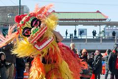 Lunar New Year (Andy Marfia) Tags: chicago iso100 dragons chinesenewyear parade uptown lunarnewyear f63 yearofthemonkey argylest 1400sec d7100 1685mm
