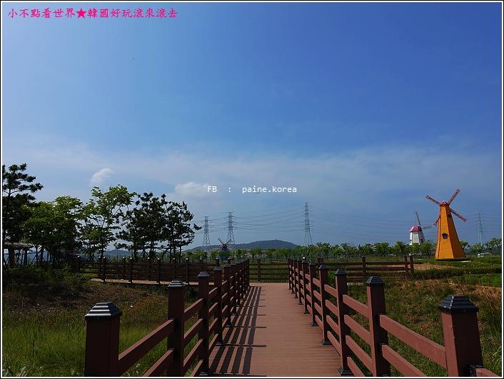 大阜島海邊香氣公園 (25).JPG