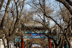 Lama Temple 001 (Adolf Scirooco Kevin Nakamura Van Murasame Muller ) Tags: china door new old winter history temple year beijing sunny lama  northern peking