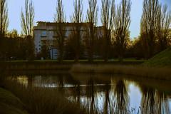 Reflection (Maria Eklind) Tags: park trees reflection castle water se sweden outdoor urbannature sverige malmö cityview euorpe kungsparken spegling skånelän malmöhus