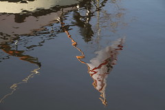 spiegeling in de Vaart van de pannenkoekenboot (Assen) (willemsknol) Tags: assen vaart pannenkoekenboot willemsknol