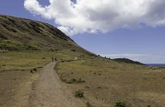 Rano Raraku (blueheronco) Tags: statues trail pacificocean moai easterisland quarry tuff rapanui isladepascua ranoraraku volcaniccrater rapanuinationalpark