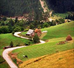 Serbian countryside 02 (Katarina 2353) Tags: mountain film field landscape countryside nikon europe serbia valley srbija katarinastefanovic katarina2353