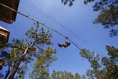 It's a Rollercoaster? It's a Zipline? It's a new breed of ride: The #Rollercoaster #Zipline http://j.mp/1L2zIYX (Skywalker Adventure Builders) Tags: design high construction course ropes zipline zipwire skywalker hochseilgarten waldseilpark klimpark klimbos