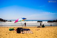 DSC_1486 (quannguyenca85) Tags: ocean california sky beach umbrella big sand waves pacific bigsur sunny parasol sur pfeiffer pfeifferbeach