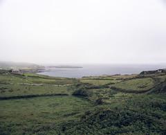 Fog - Beara Peninsula (nikolaijan) Tags: ireland mamiya film mediumformat agfa expired 220 rb67 filmphotography bearapeninsula irishlandscapes irishweather optima160 c50mmf45