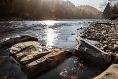 Back light (Role Bigler) Tags: nature river landscape schweiz switzerland wasser suisse stones natur steine sunrays fluss landschaft sonnenstrahlen gegenlicht emmental emme intothelight manfrottotripod ef20mmf28 flusssteine canoneos5dsr