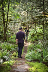 Forward (Mason Aldridge) Tags: travel friends summer canada green sunshine forest trek canon 50mm spring rainforest bc bokeh britishcolumbia f14 exploring hike wanderlust explore shallow 6d fraservalley shallowdof