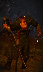 Losing the Head (T0XICO) Tags: rpg beheaded tw3 witcher olgierd cdprojektred witcher3 everec