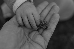 Helping Hand (Daniel C. Brunner) Tags: blackandwhite bw germany blackwhite sony bnw schwarzweis sonyalpha a6000 sel35f18 alpha6000