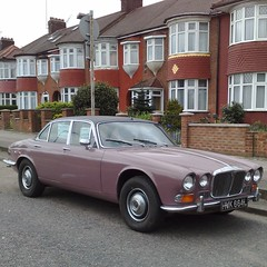 ж (uk_senator) Tags: pink 1972 daimler sovereign xj