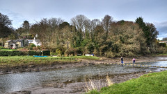 Stepping stones at Lerryn, Cornwall (Baz Richardson (due back on 27 May)) Tags: cornwall steppingstones lerryn riverlerryn