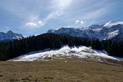 Przysłop Mietusi, w górze Czerwone Wierchy, z lewej Giewont