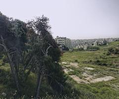 I had fallen in love with this city  (abidabdulrahman) Tags: travel trees green love night forest sony amman jordan       vsco vscocam rx100m3