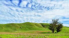 View at Tolay Lake Regional Park. (harminder dhesi photography) Tags: california park trees sky green nature clouds landscape outdoors view hiking sonoma hills bayarea petaluma sonomacounty norcal s3 vsco snapseed vscocam