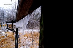 DSC_1039_124 (Jeffery A. Smith) Tags: ice nikon icestorm northdakota icicle freezingrain fenceline woodfence bottineau woodpost d3300