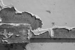 Mur extrieur, couvent de Deschambault (Patrice StG) Tags: blackandwhite bw texture spring paint noiretblanc gimp nb peinture qubec printemps tonemapping mantiuk06 mantiuk d5100 luminancehdr tamron16300vc