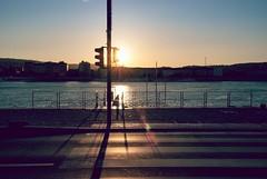traffic-light (kareszzz) Tags: road blue sunset sun lamp river landscape trafficlight spring hungary cityscape shadows sundown riverside budapest quay flare photowalk april backlit duna danube donau 2016 tamron18200 vroskpek sonya200
