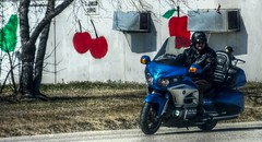 Apple, Cherries & Pear (ezigarlick) Tags: apple fruit honda spring cherries manitoba riding pear motorcycle april fruitstand richer highway302