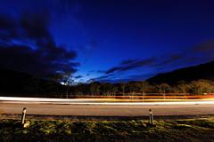 Passing Lights (Click And Pray) Tags: longexposure nightphotography trees clouds stars landscape scotland argyll illumination bluesky lighttrails holyloch kilmun passinglights landscapeformat managedbyclickandpraysflickrmanagr landscapeformatlandscapeblueskycloudsscotlandargyllstarsnightphotographylighttrailsilluminationtreespassinglightslongexposurekilmunholylochinvereck