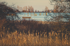 Frenchman's Bay (A Great Capture) Tags: lake ontario canada spring photographer durham canadian lakeontario frenchmansbay springtime pickering on agc 2016 ald ash2276 adjm ashleylduffus wwwagreatcapturecom agreatcapture