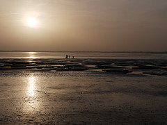 Sunset on the Baie de Somme (Passeret) Tags: sunset sea beach water lumix panasonic channel manche coucherdesoleil baiedesomme crotoy lecrotoy gm1 dmcgm1